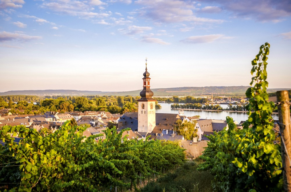 Rüdesheim_am_Rhein.jpg (1000×662)