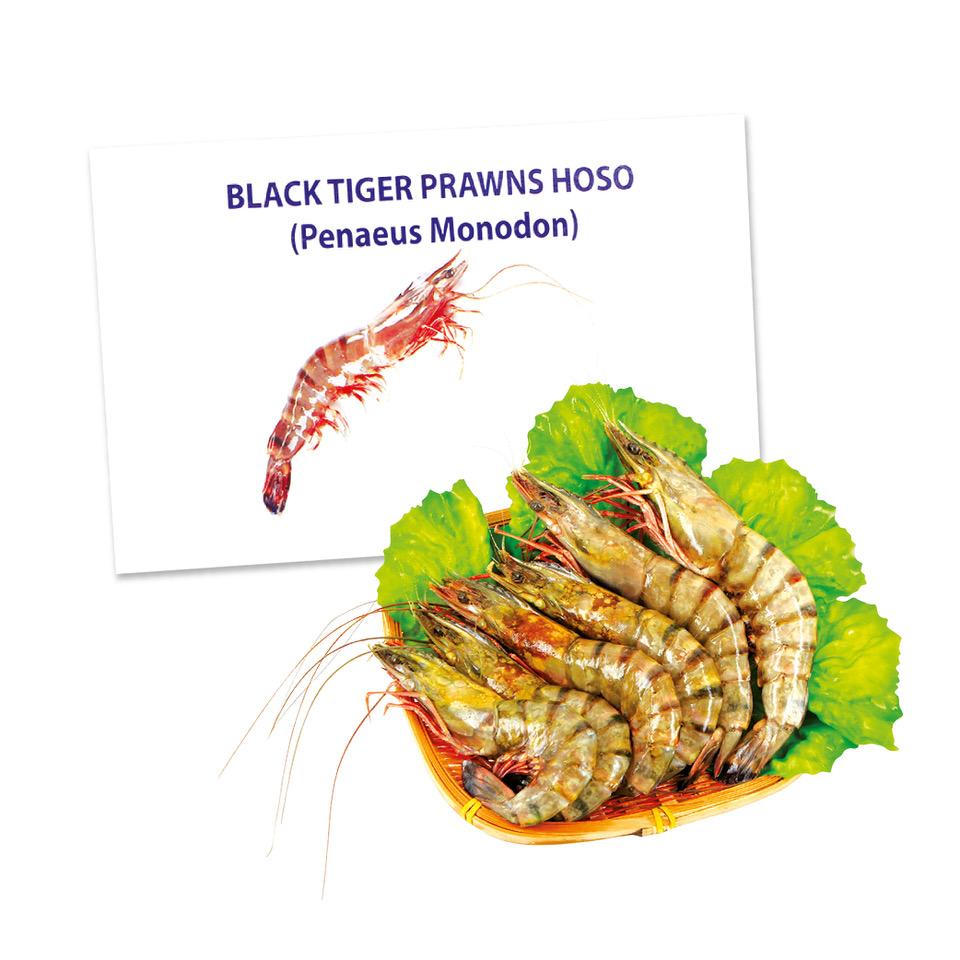 shrimp.jpg (960×960)
